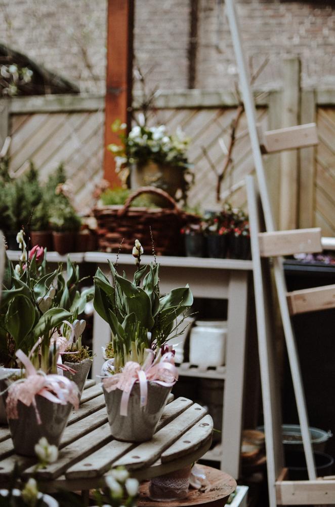 Stielecht-floristen-blumen-koeln-Josephine Bruecher-1.jpg