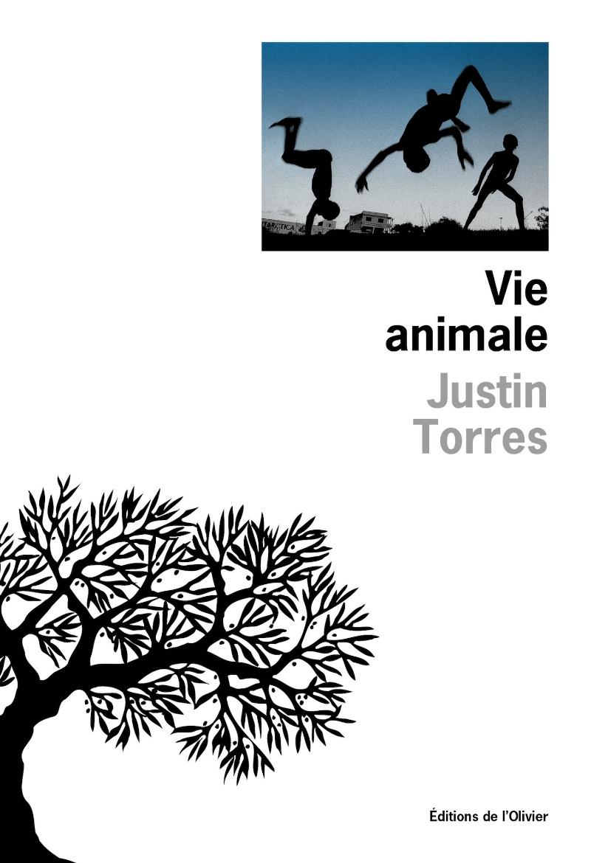 torres_animale_Olivier_France.jpg