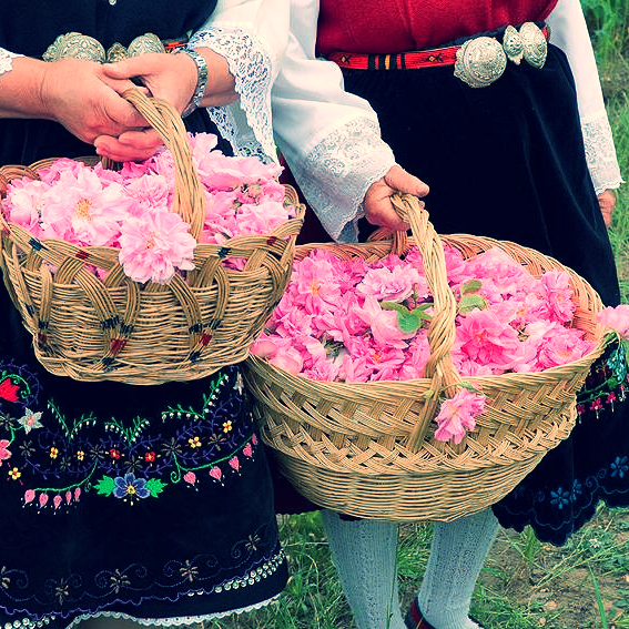 Bulgarian Rose Festival. (image from bulgariatravel.org)