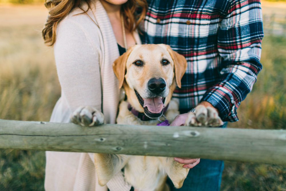 Kodie and Ben Engagements blog-27.jpg