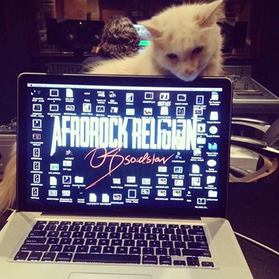 PUSSY CAT LOVE.jpg