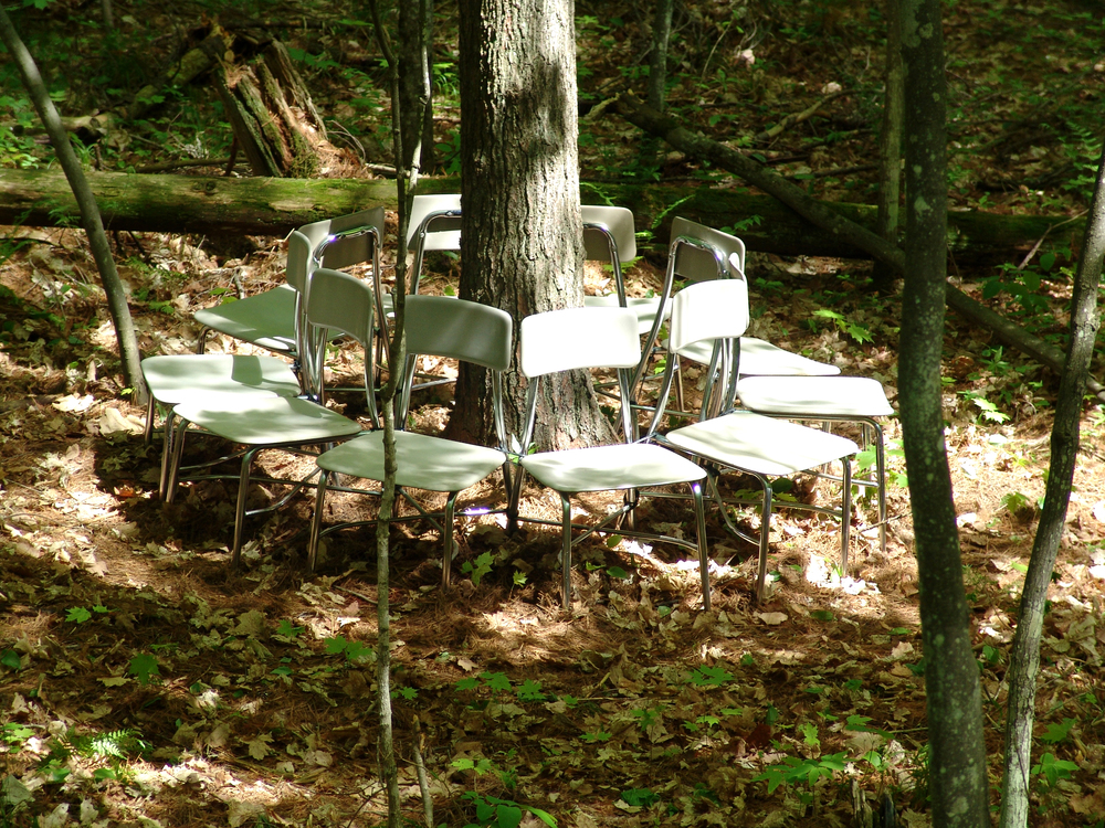 The Rest of the Forest - Part 2  |  2007  |  found chairs  |  collaboration with Bird Ross