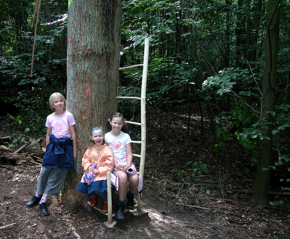 Ladderback  |  2004  |  wood  |  74 x 20 x 22  |  Darmstadt, Germany