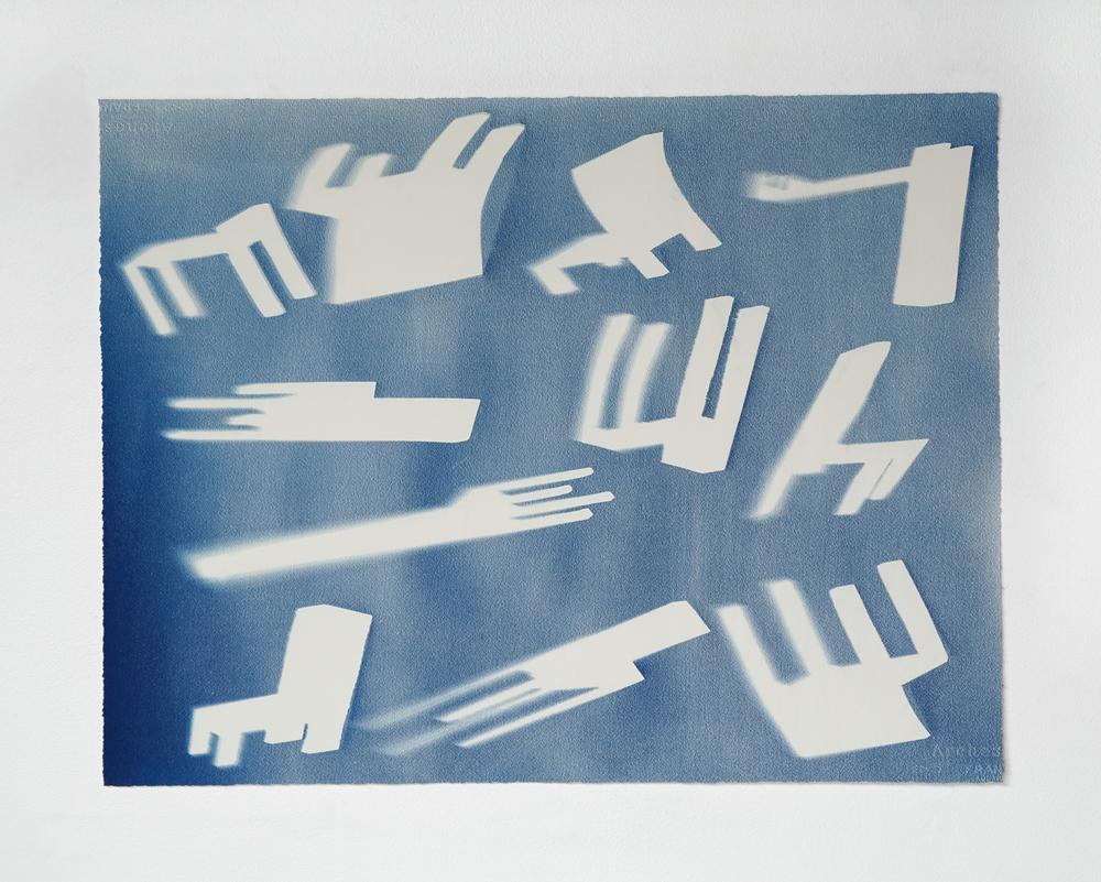 Cyanotype I 2014 I cyanotype print on paper I 28 x 21.25