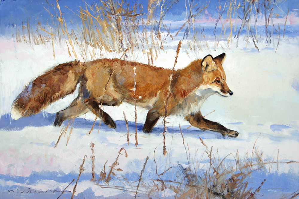 """Fox in Fresh Snow""  20 x 30  Oil"