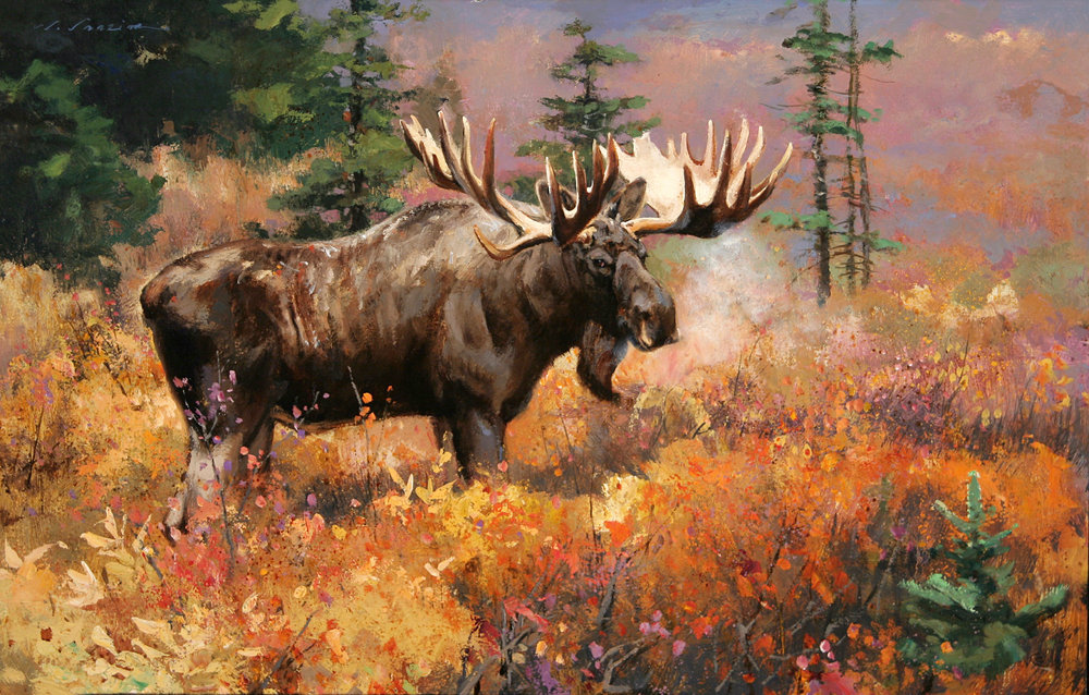 """Yukon Prime"" 18 x 28 Oil (Buffalo Bill Museum)"