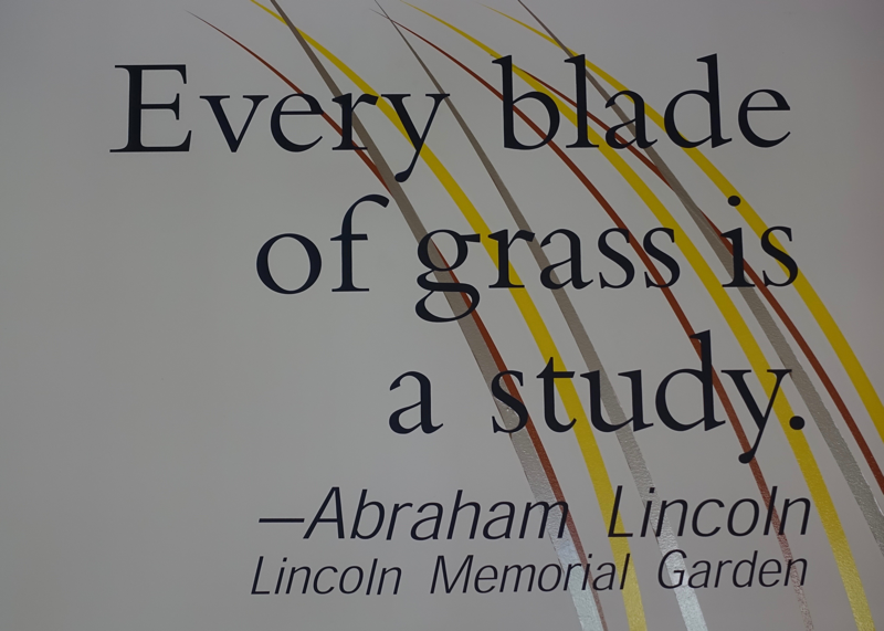 Every Blade of Grass is a Study.png