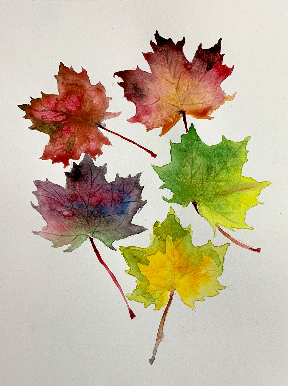 LEAVES , 2018. Watercolor.