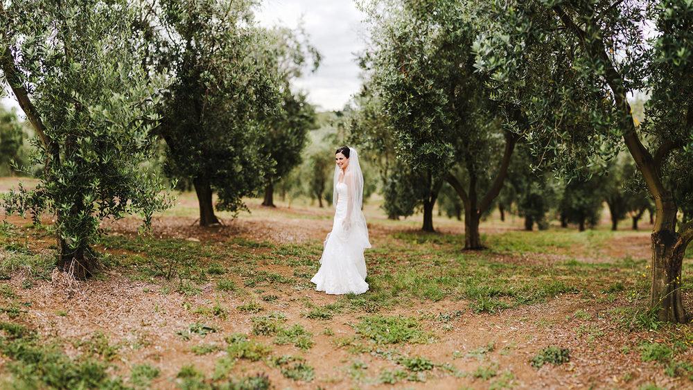 Bride in Bracu Olive groves.jpg
