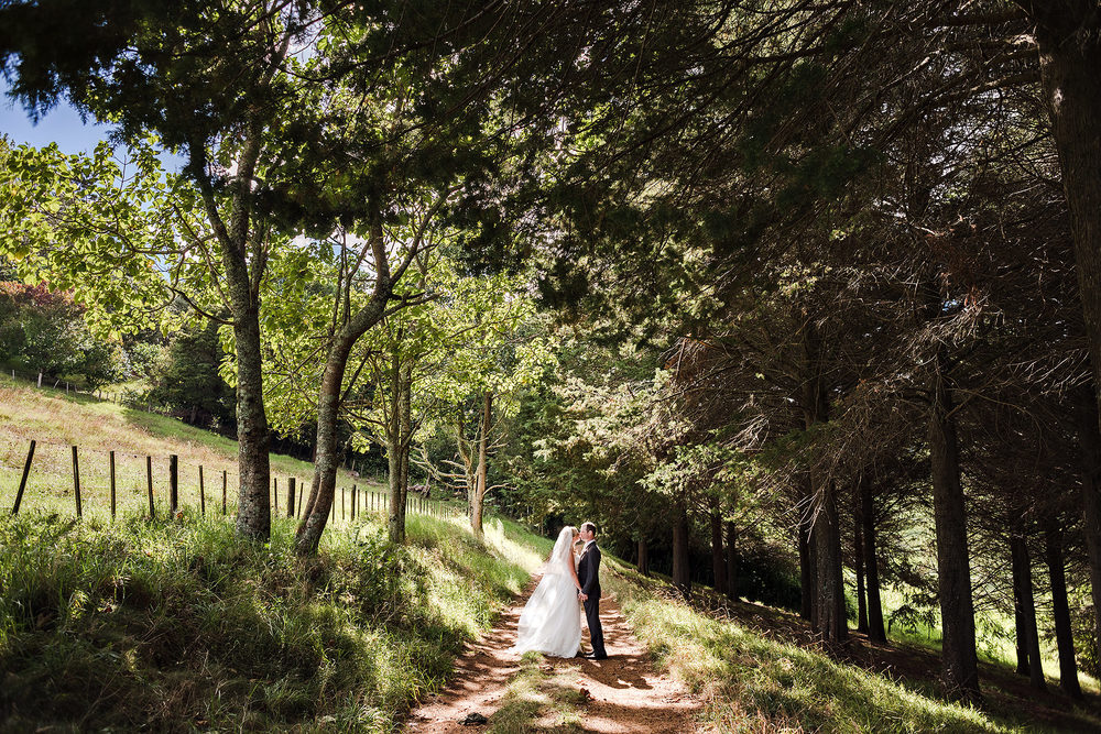 57 forest wedding new zealand.JPG