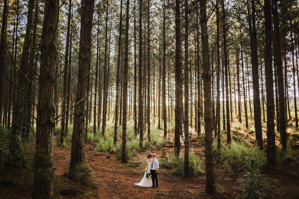 Kumeu Forest Wedding