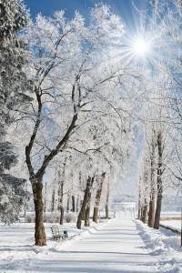 Winter-in-Boise-Idaho-200x300.jpg