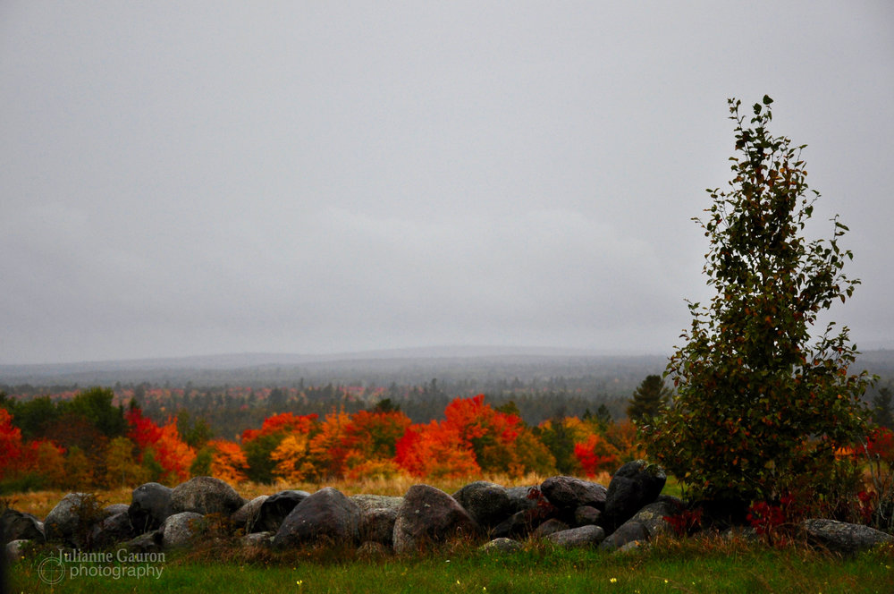 Rolling through Downeast Maine in the misty rain mid October colors.