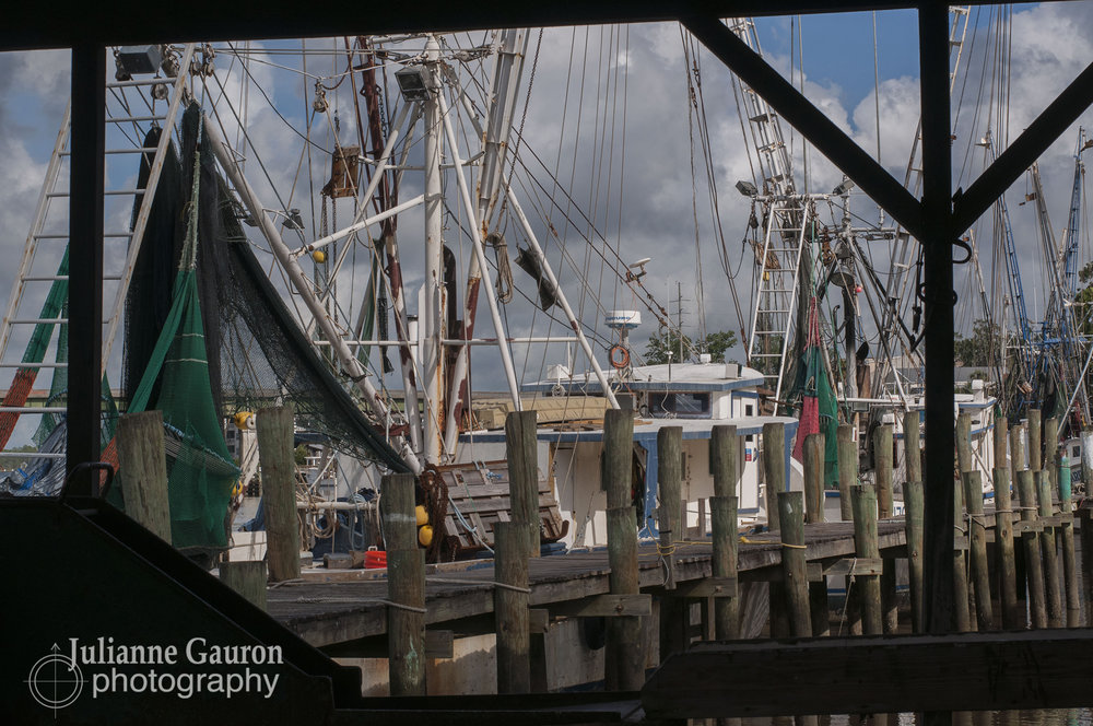 The docks are quiet now most days, the machinery unused where there used to be shrimpboats tied up 3 deep only a decade ago.