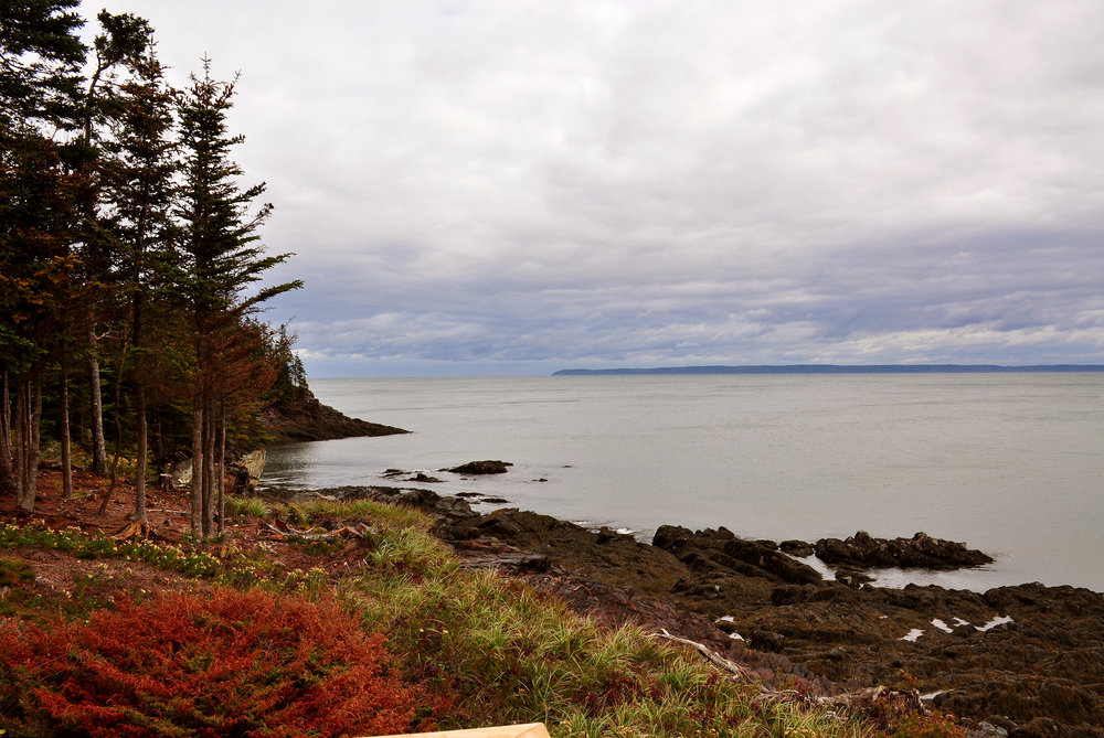 The view near Herring Cove Campground, the feeling of awayness, of escape was powerful.