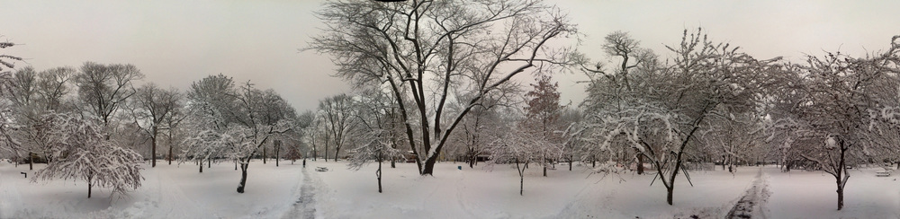 Wesleyan Quad in Snow.jpg