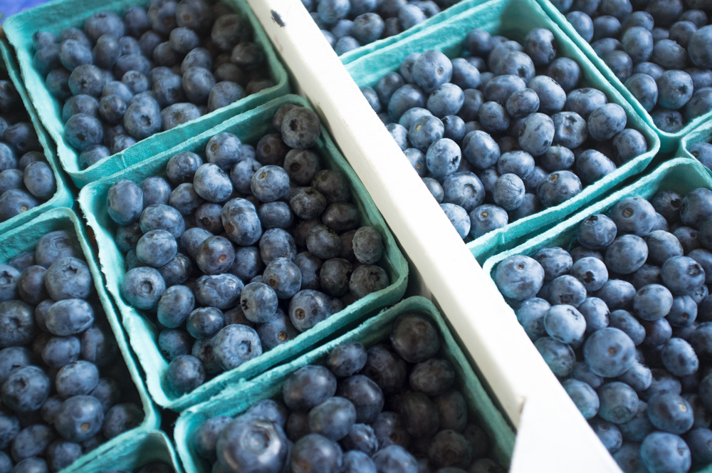 These blueberries are from Bizjak Farms.
