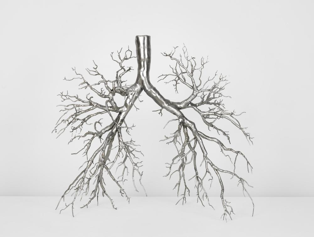 Roxy Paine, Untitled (Maquette for Lungs)
