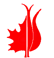 Canadian and Turkish Women's Association of Ottawa