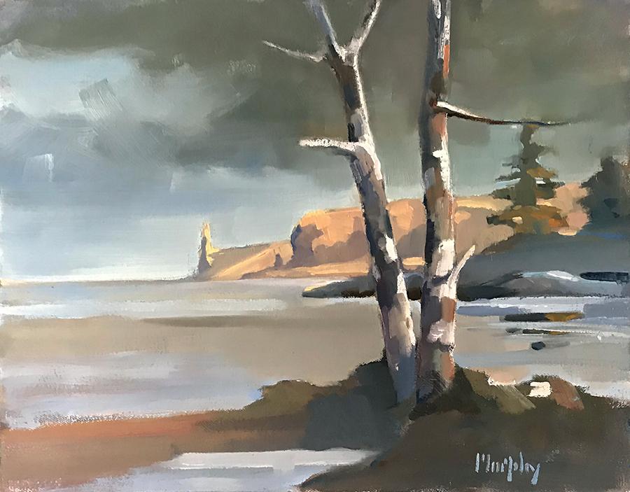Deerfield Birches
