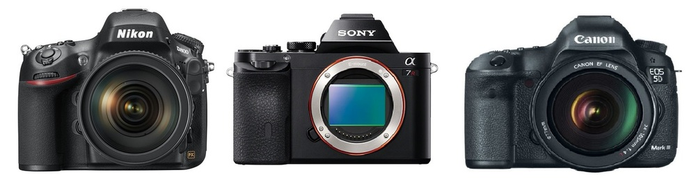 Business of Photography: Nikon D800, Sony a7r, Canon 5d Mark III