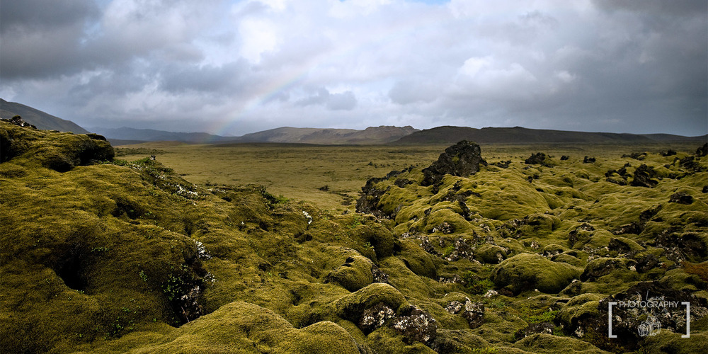 Moss Covered Lava Fields, Iceland.  Photo Credit: Jared Lawson Photography