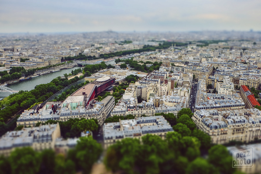 Toy_Paris2_PezzPhoto
