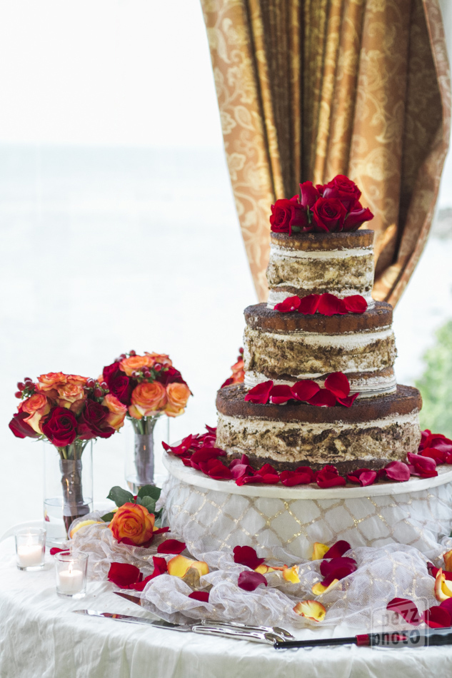 tiramisu_cake_Alessi_PezzPhoto