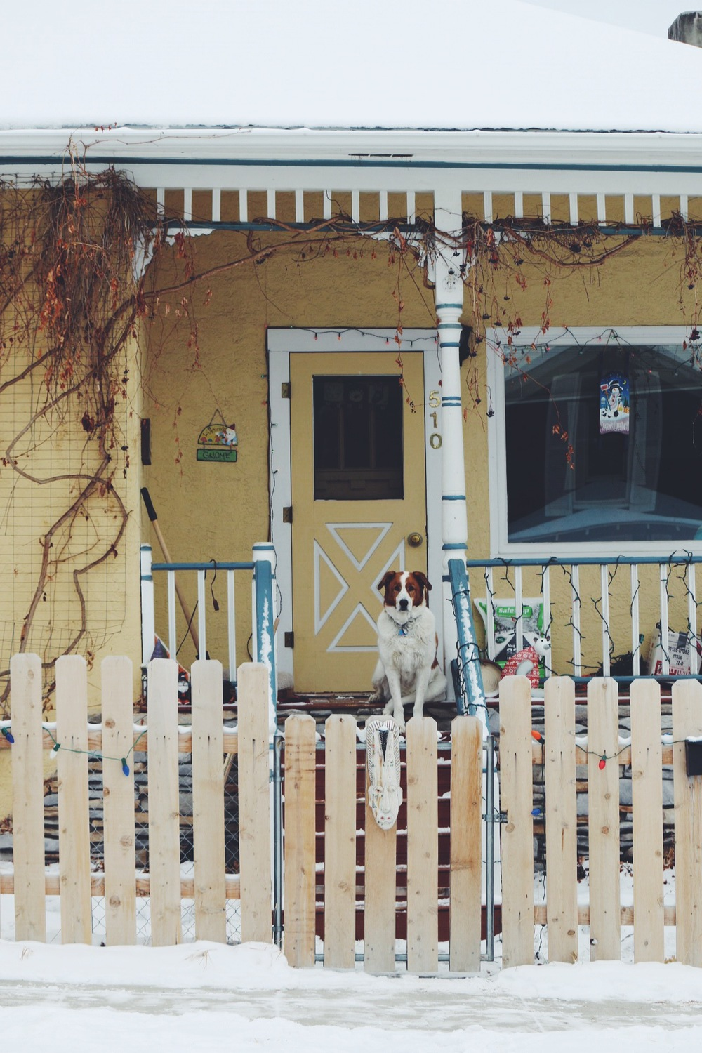 I made these photographs of houses in my hometown of Helena, Montana.