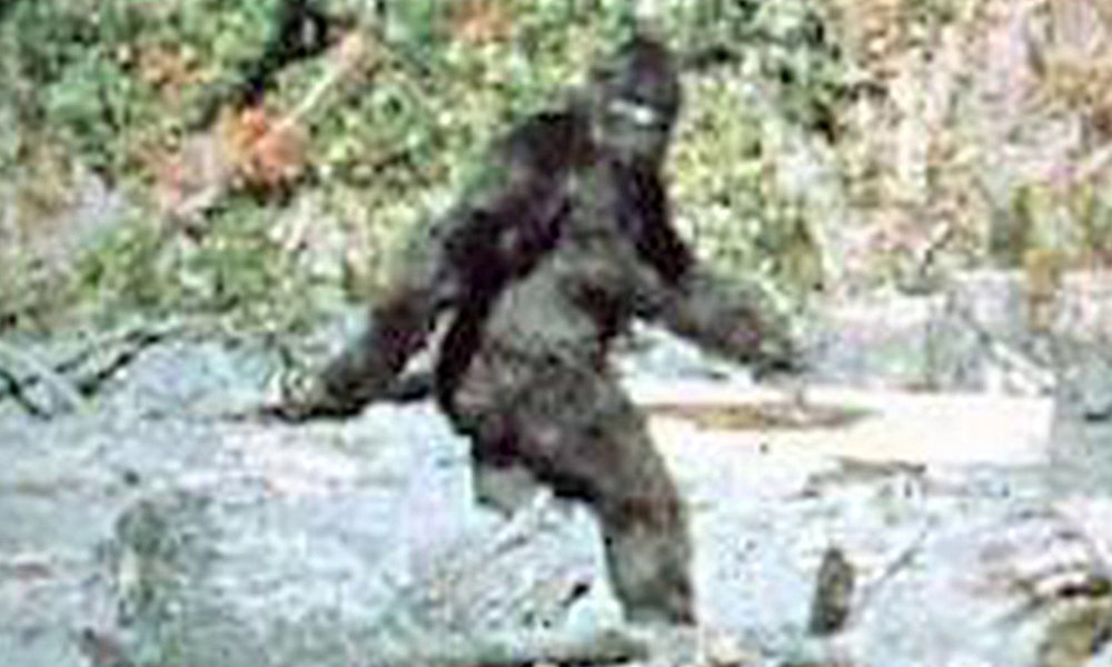 bigfoot.jpg