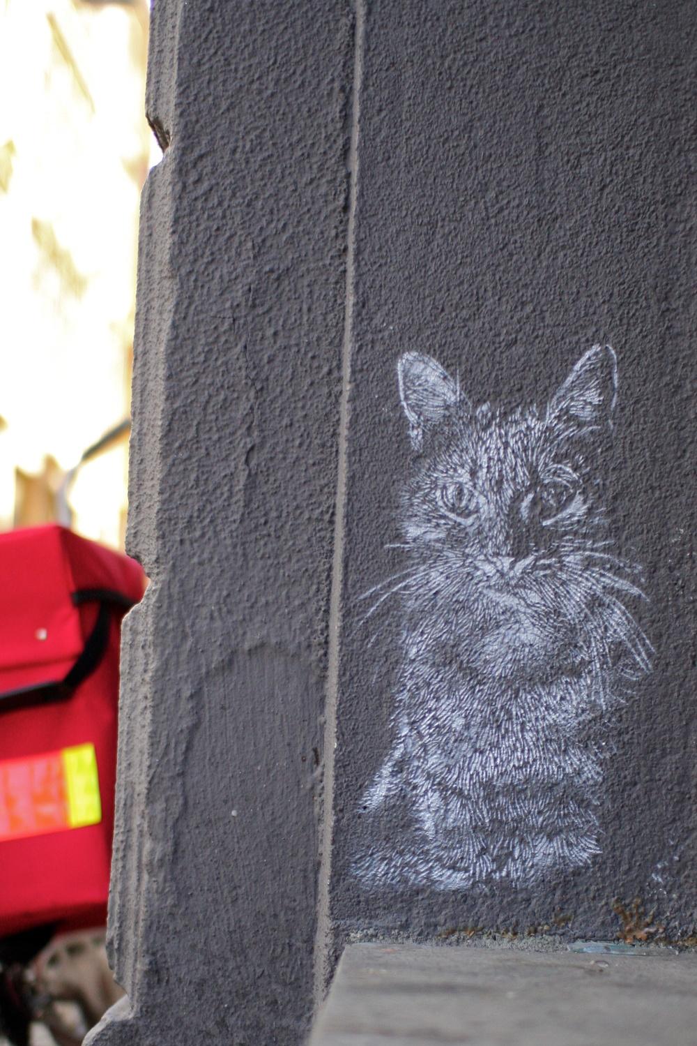 – Jeg liker katter. Og så er det en del andre gatekunstnere som tegner rotter...