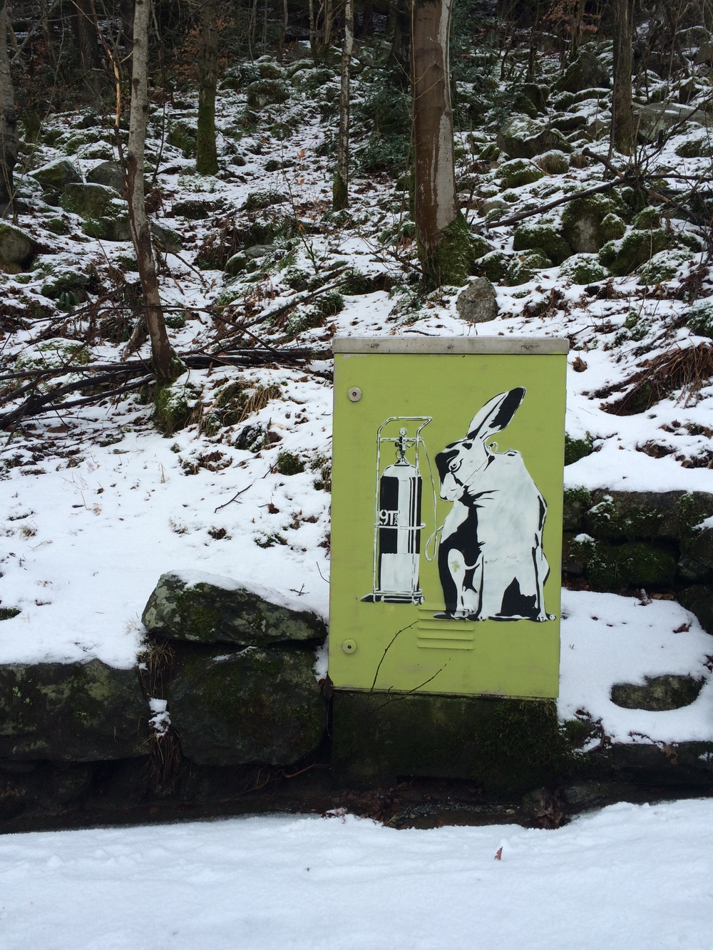 kanin-fjellveien