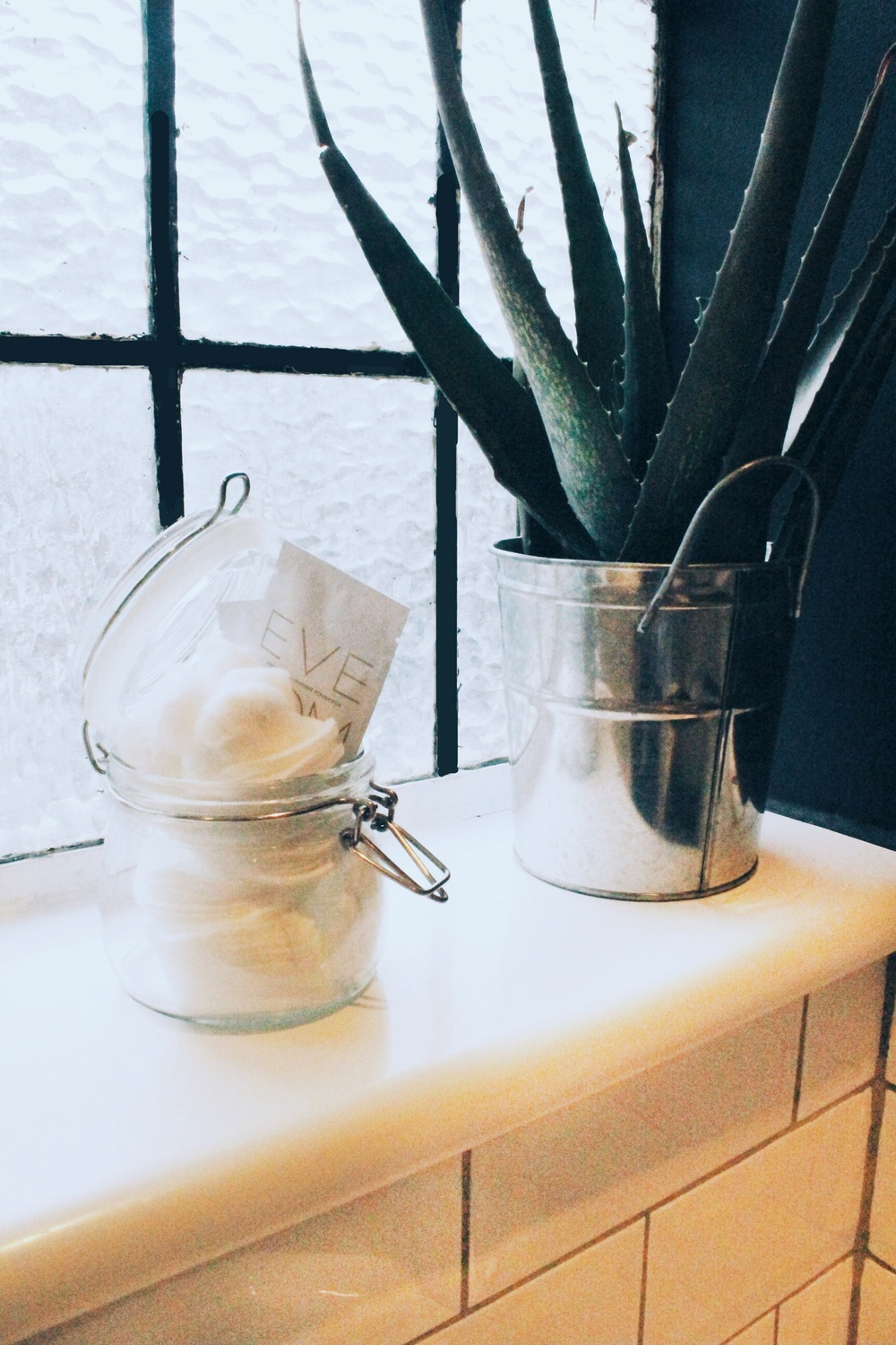 bathroom styling ideas aloe vera