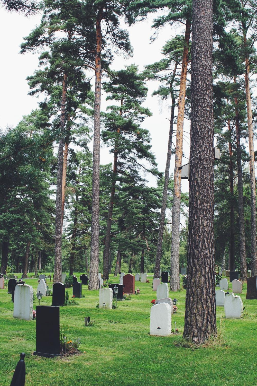 stockholm graveyard