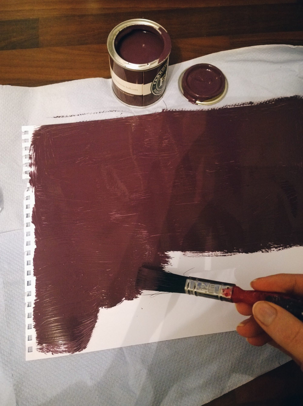 Farrow and Ball purple paint