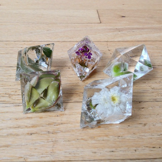 encapsulated flowers