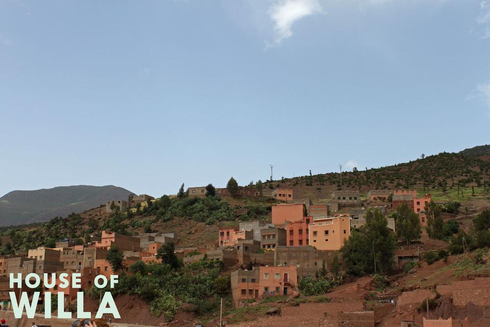 morocco_houseofwilla.jpg