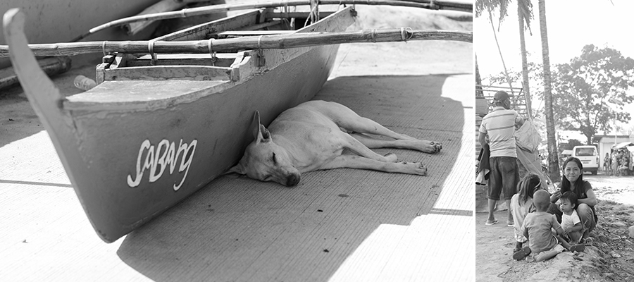 palawan philippines boats dog kids children