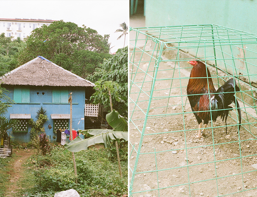 boracay philippines beach travel washington dc photographer film rooster