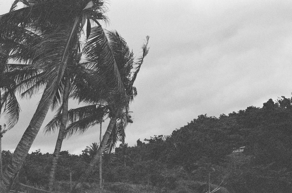 boracay philippines beach travel washington dc photographer film palms