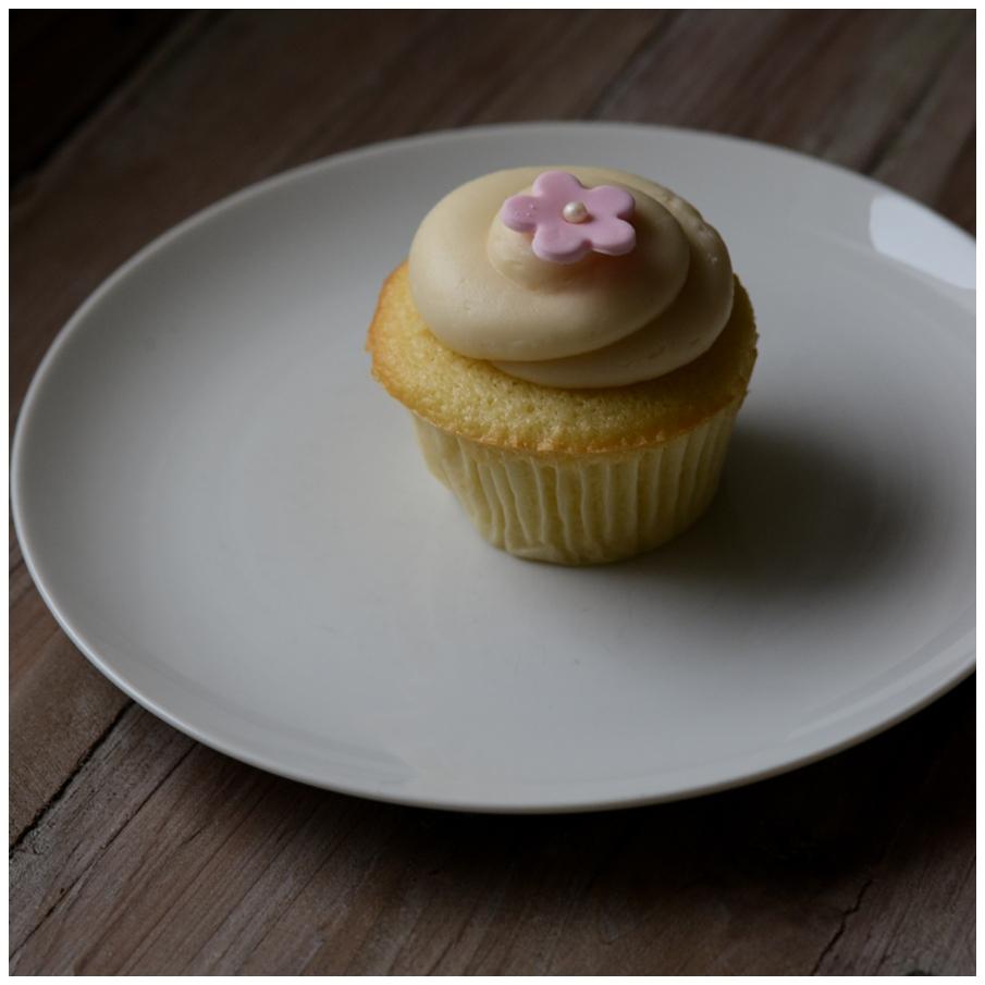 rainy day cupcake lissa ryan photography
