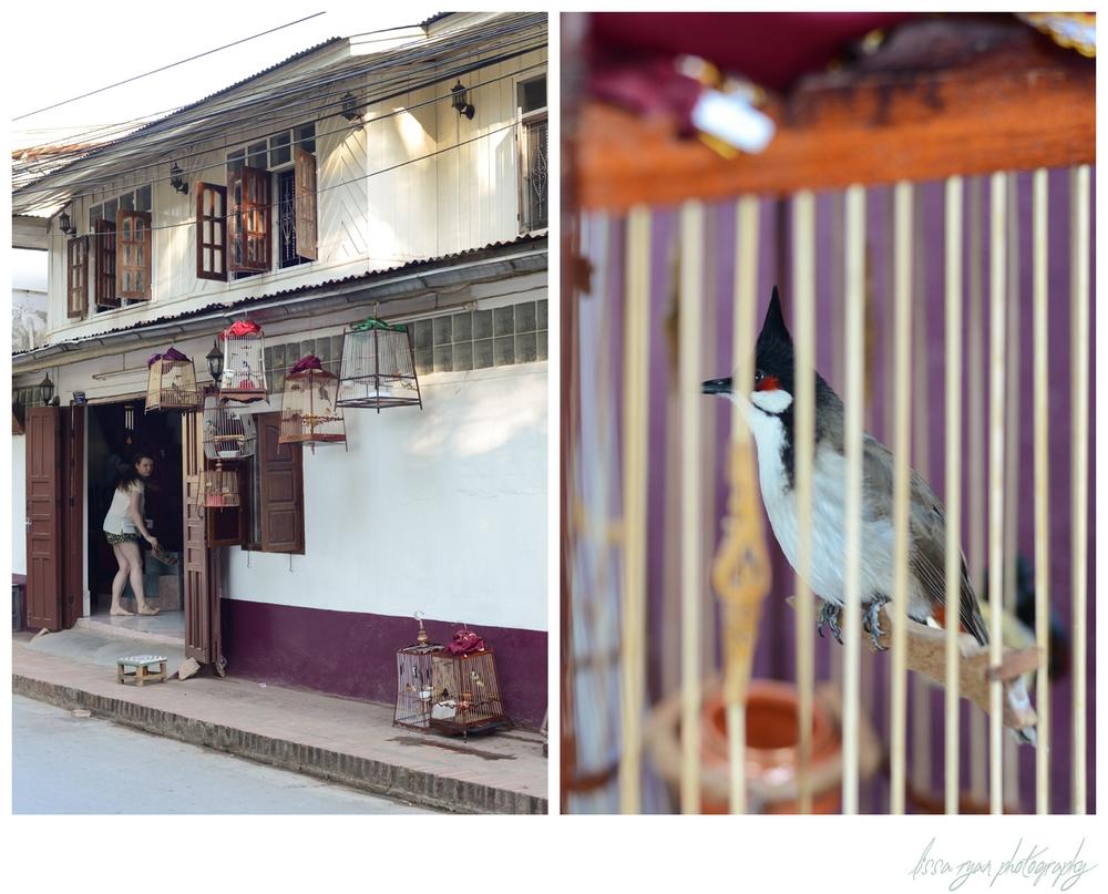 Luang Prabang-24_(blog).jpg