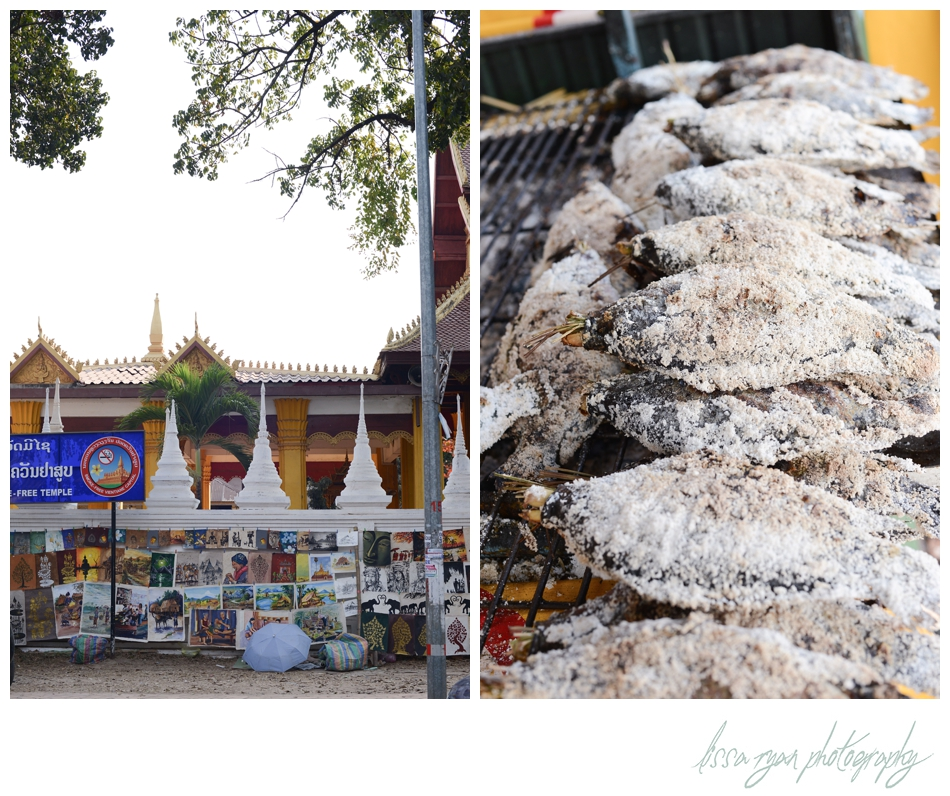 vientiane laos travel asia washington dc photographer lissa ryan photography