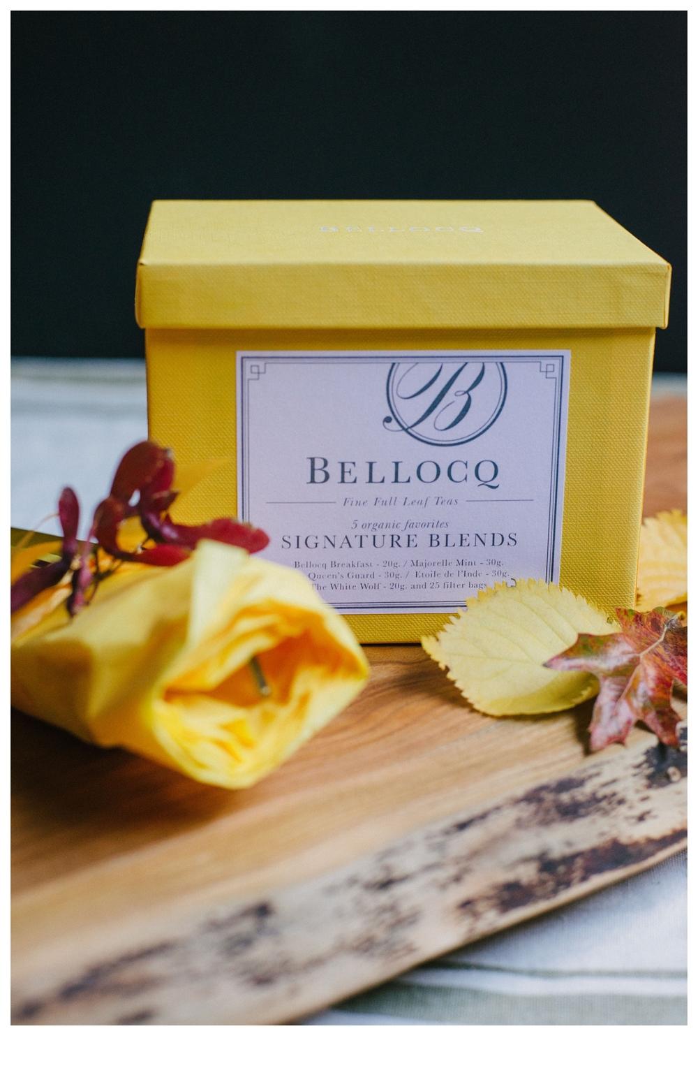 bellocq tea fall giveaway washington dc photographer lissa ryan photography