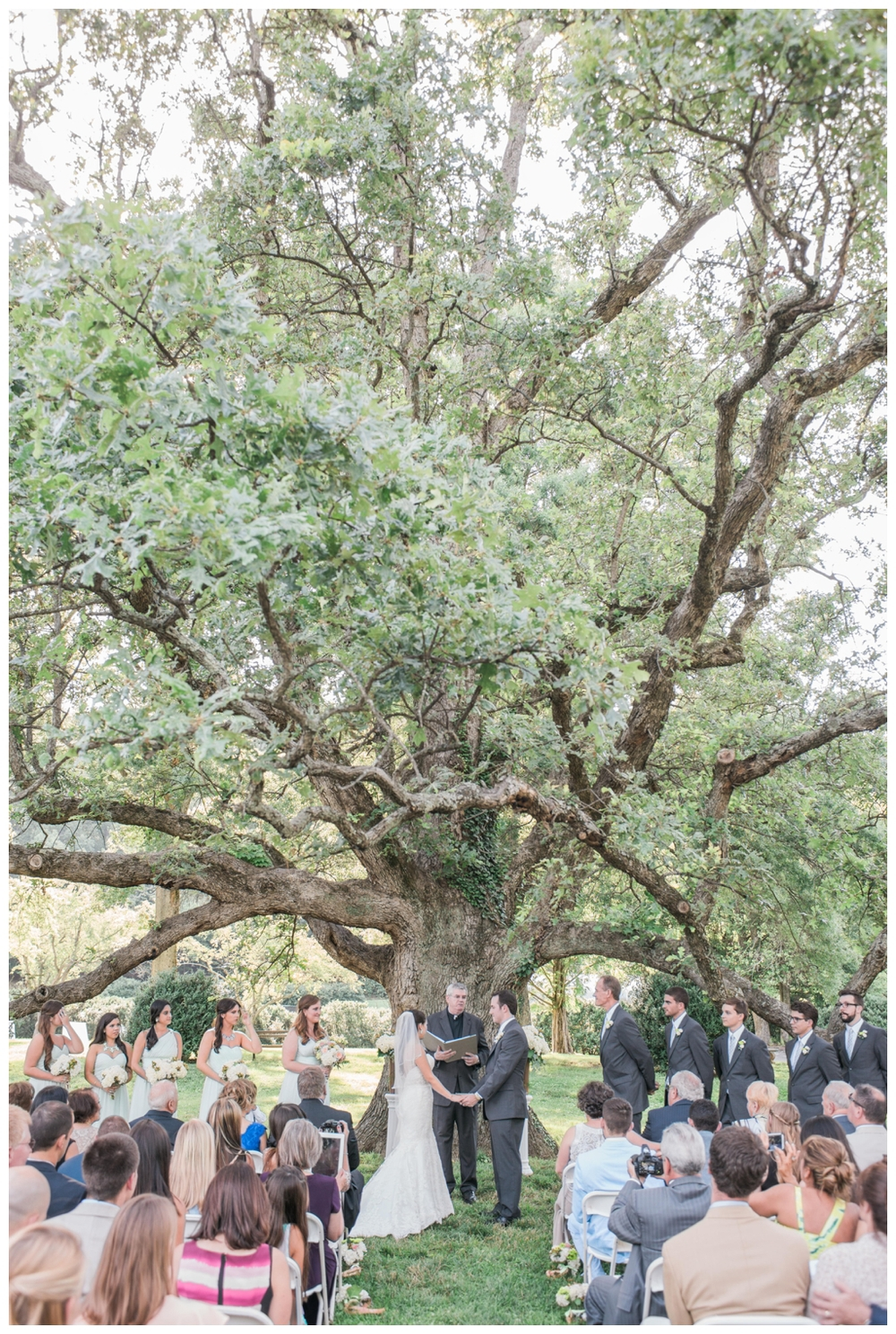 morven park wedding leesburg virginia wedding lissa ryan photography