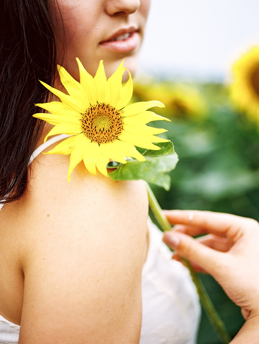 summer sunflower portrait beauty washington dc boudoir photographer lissa ryan photography
