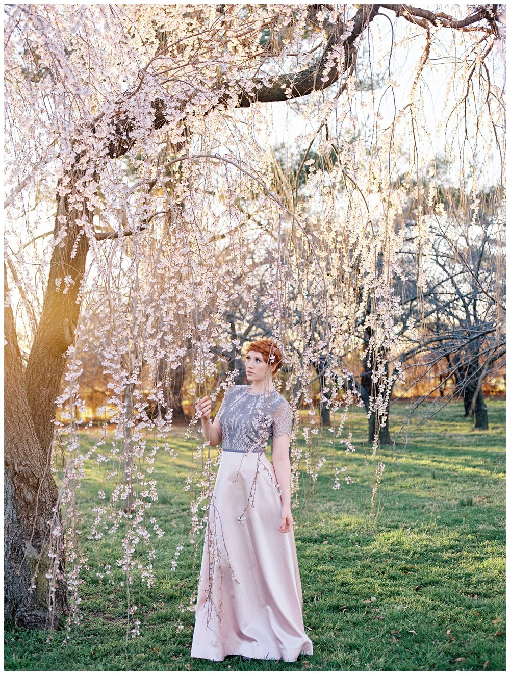 washington dc spring cherry blossom bridal inspiration session by fine art wedding photographer Lissa Ryan Photography