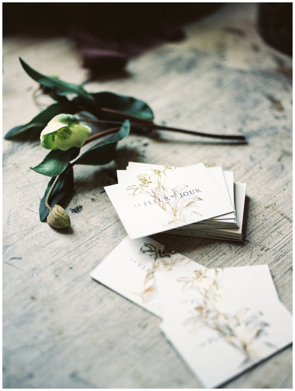 La Fleur Du Jour Branding Session Washington DC wedding florist by fine art photographer Lissa Ryan Photography