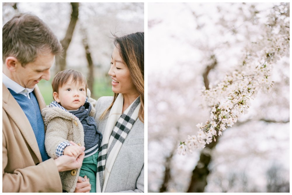 Spring Cherry blossom family session at the Capitol in Washington DC by fine art photographer Lissa Ryan Photography