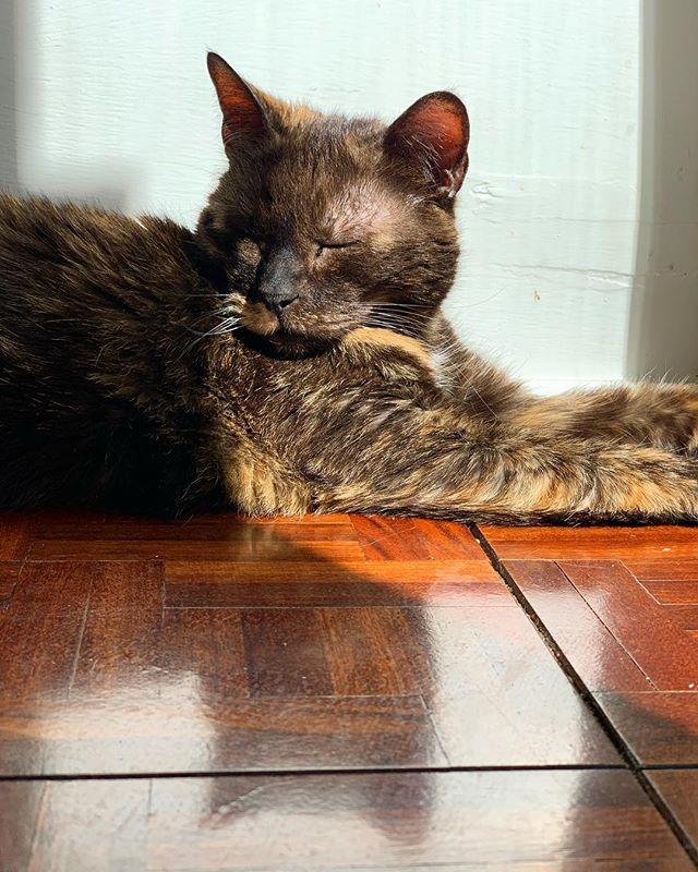 Sundays are for sunbathing